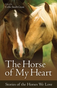 horse of my heart